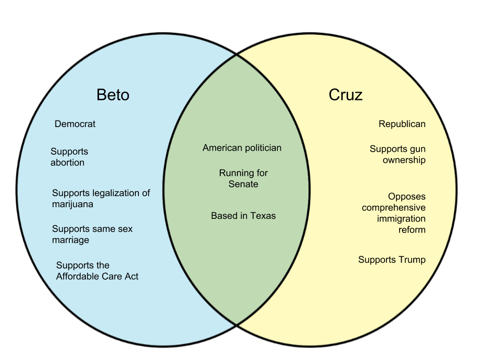 Difference Between Beto and Cruz