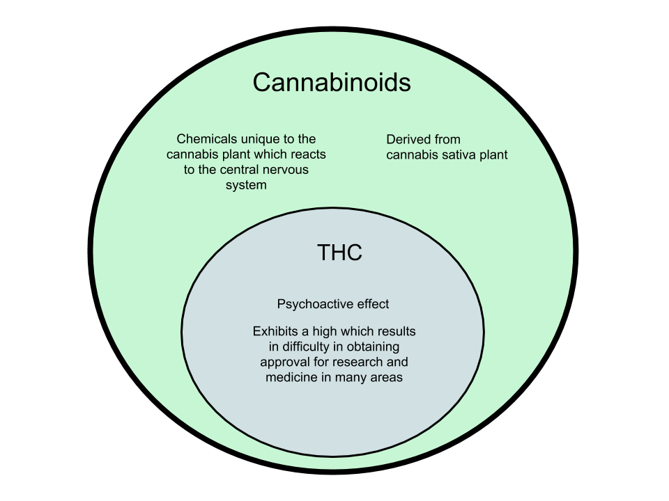 Difference Between Cannabinoids and THC