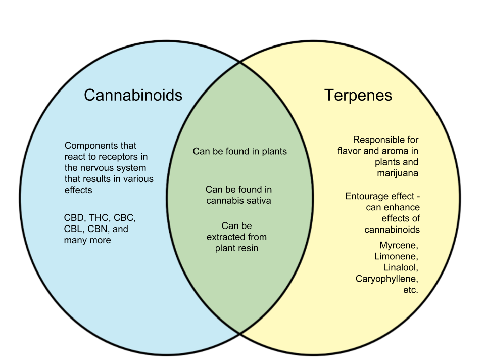 Difference Between Cannabinoids and Terpenes