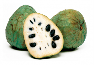 Difference between cherimoya and soursop